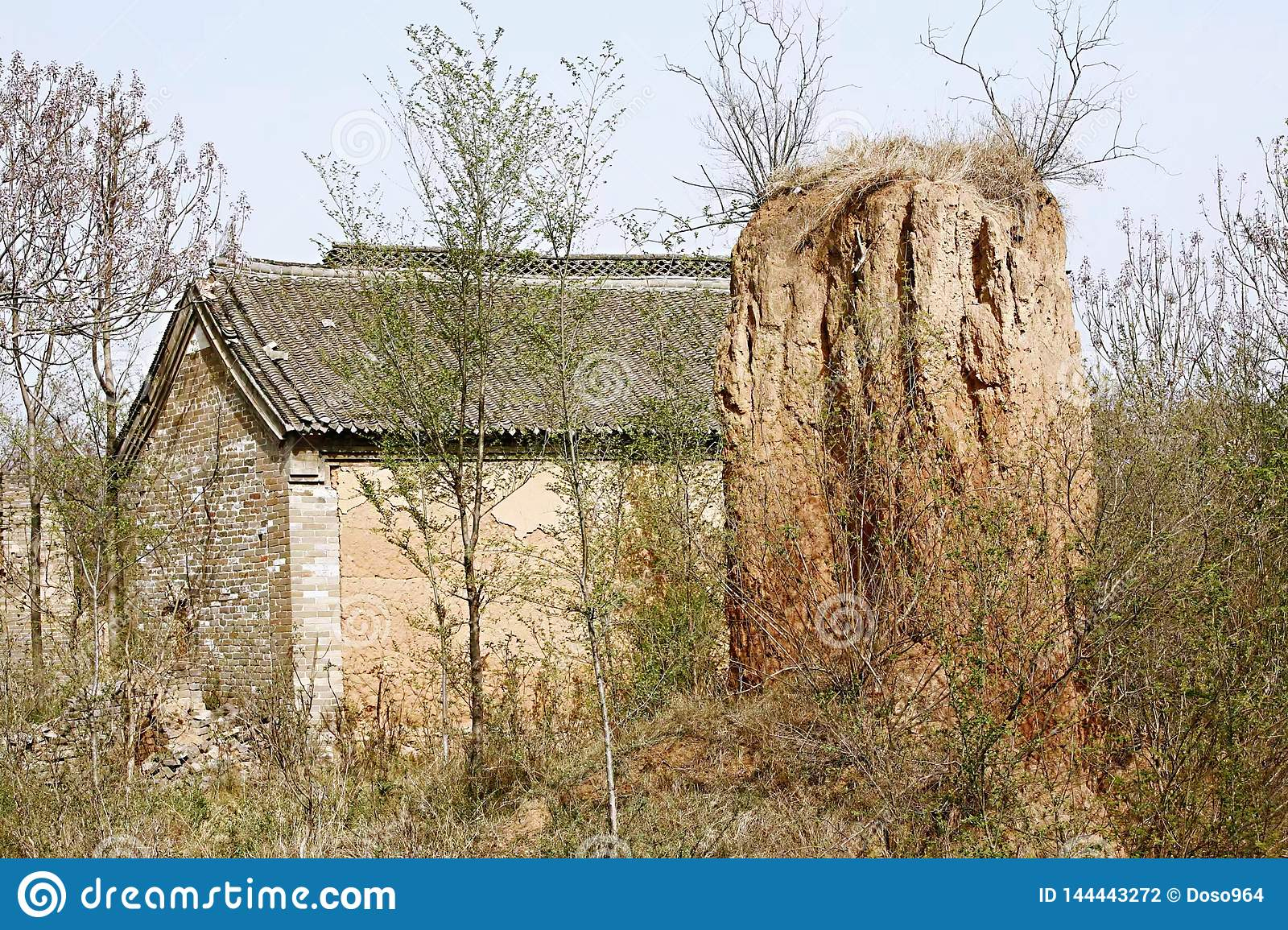 Old building in woodland