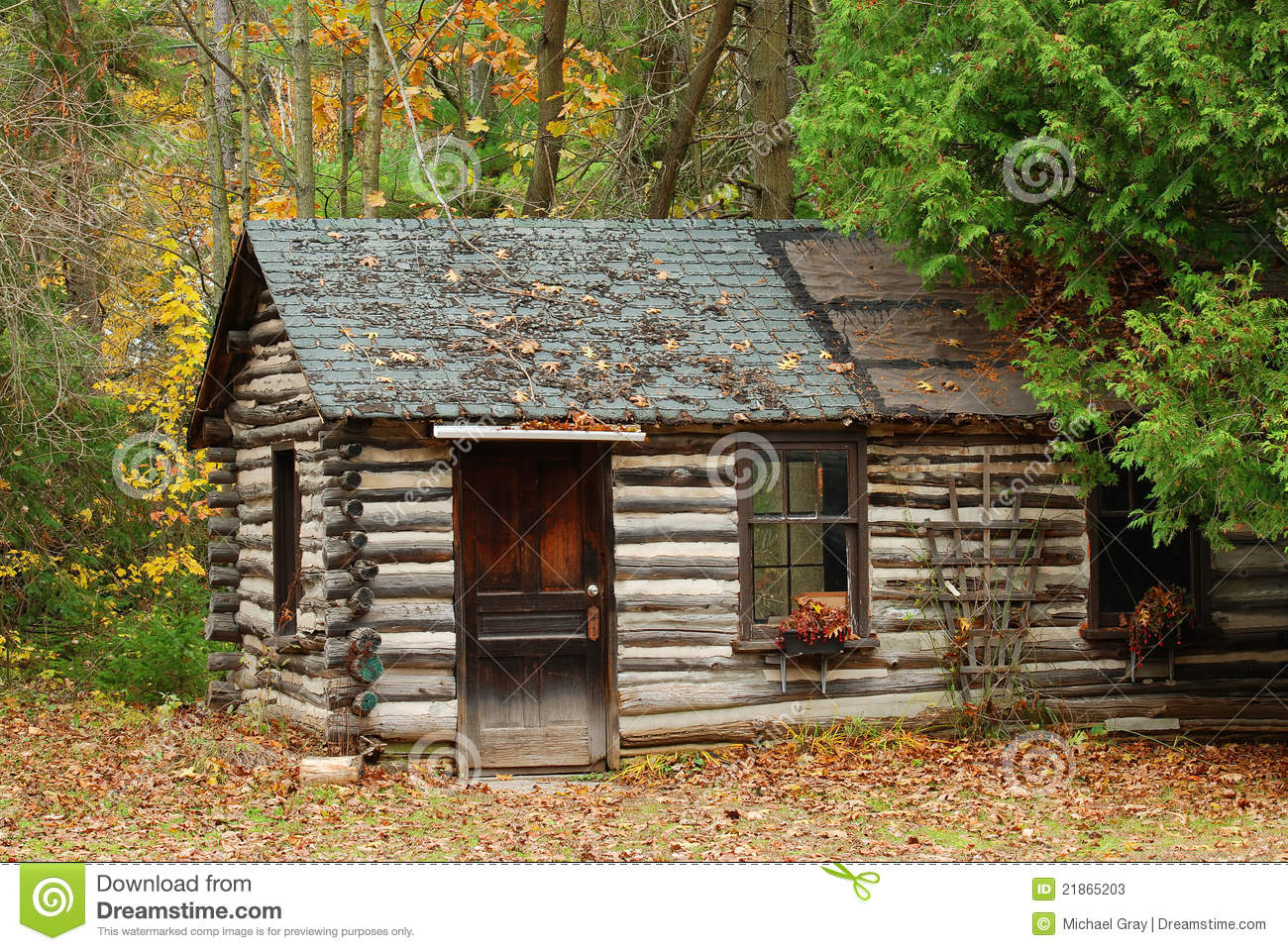 Log cabin in the woods painting - Log Cabin In The Forest Old Log Cabin In The Forest In