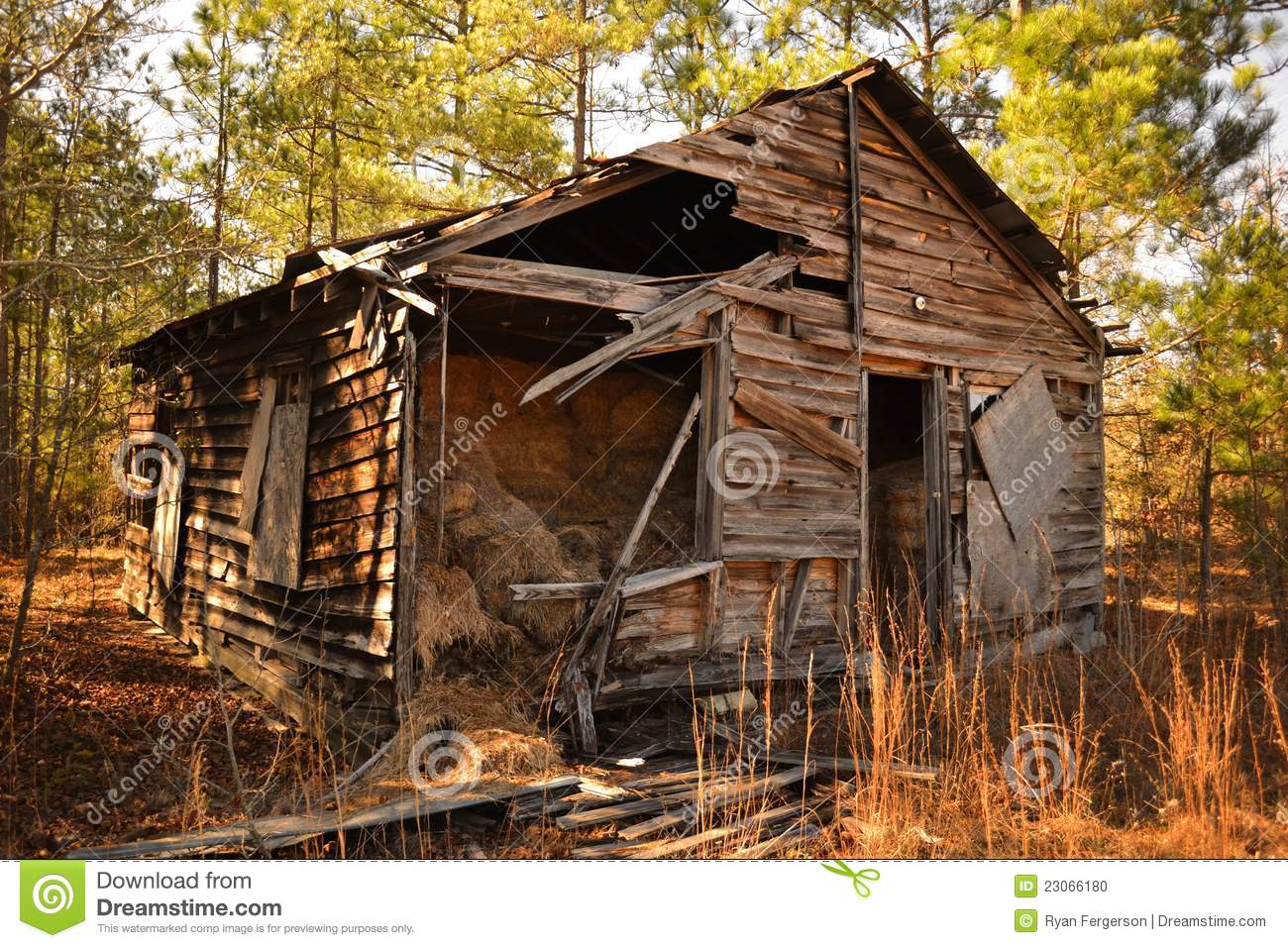 Old Cabin In The Woods Stock Photo Image Of Panels