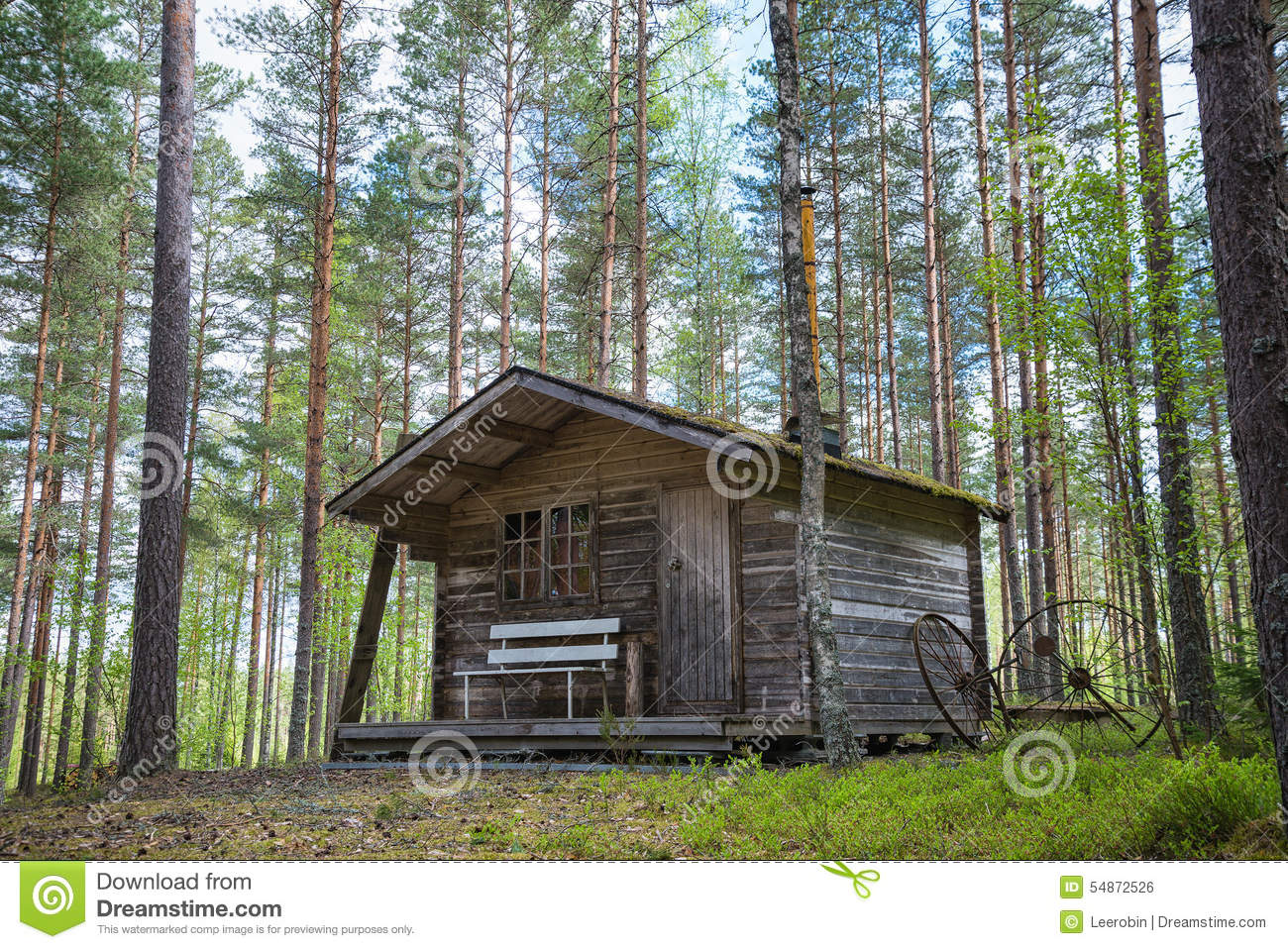 Old Cabin In The Woods Stock Photo Image 54872526