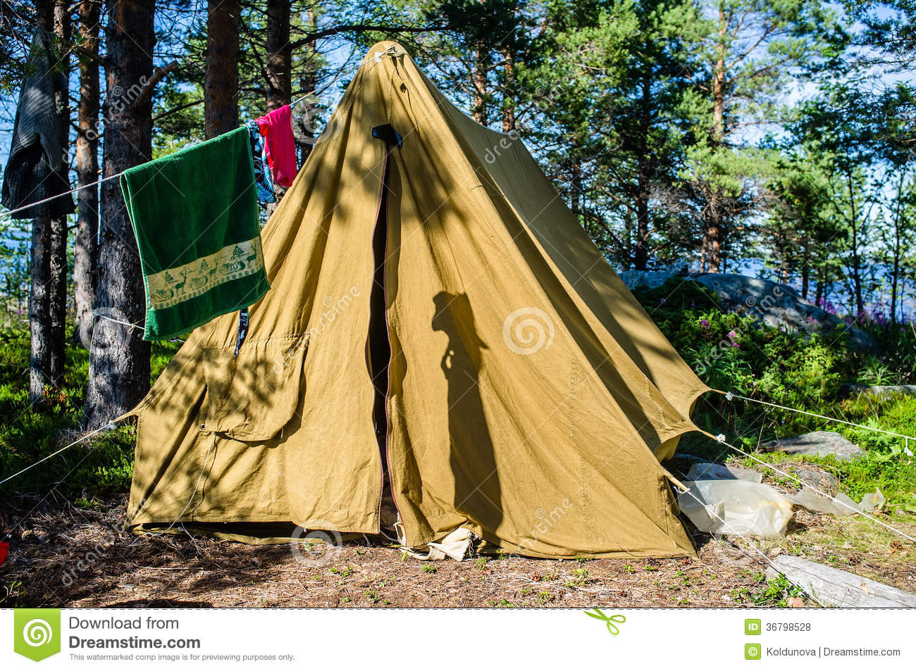 Old Canvas Tent Stands In A Pine Forest On The Island Stock