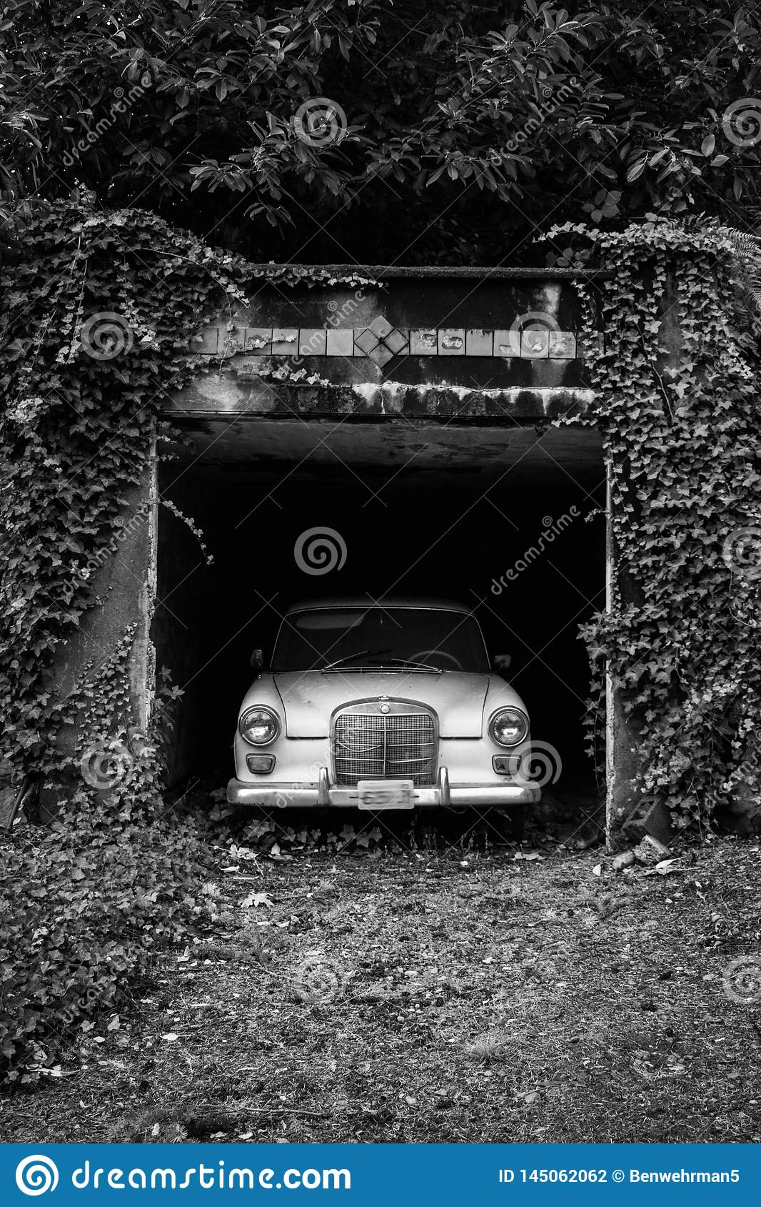 Old Car in an Overgrown Driveway