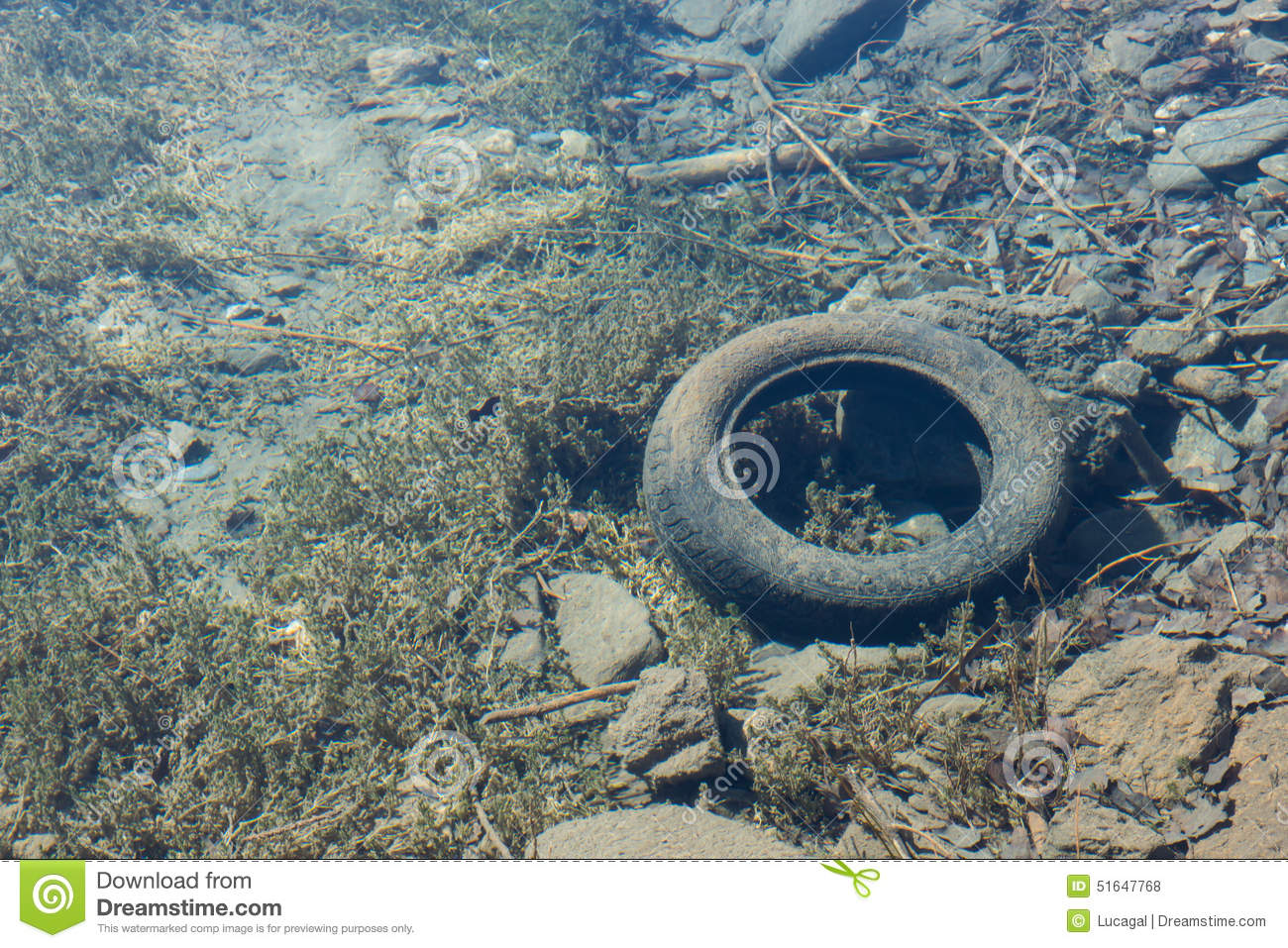 Old Car Tire Under The Clear Water Of A Mountain Lake Viewed Fro