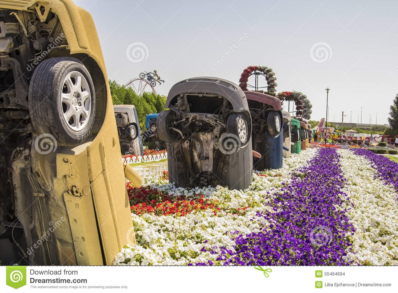 old-cars-flower-beds-dubai-miracle-garden-park-55464694 Flower Garden Design Plans on northwest landscape plans, flower bed planning online, barbeque designs plans, flower bed shapes, fall flower gardens plans, frog and toad lesson plans, flower gardens for zone 7, exhibition booth design plans, small garden plans, marshmallow catapult design plans, concession stand design plans, flower planting plans, attached pergola design plans, corner pergola design plans, garden planter plans, flower bed designs, luxury home design plans, landscape design plans, butterfly garden plans, flower gardening plans,