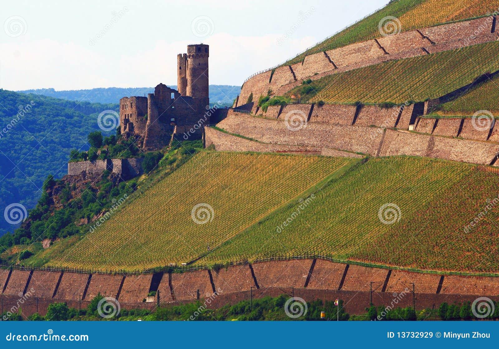 Old Castle On Vineyard