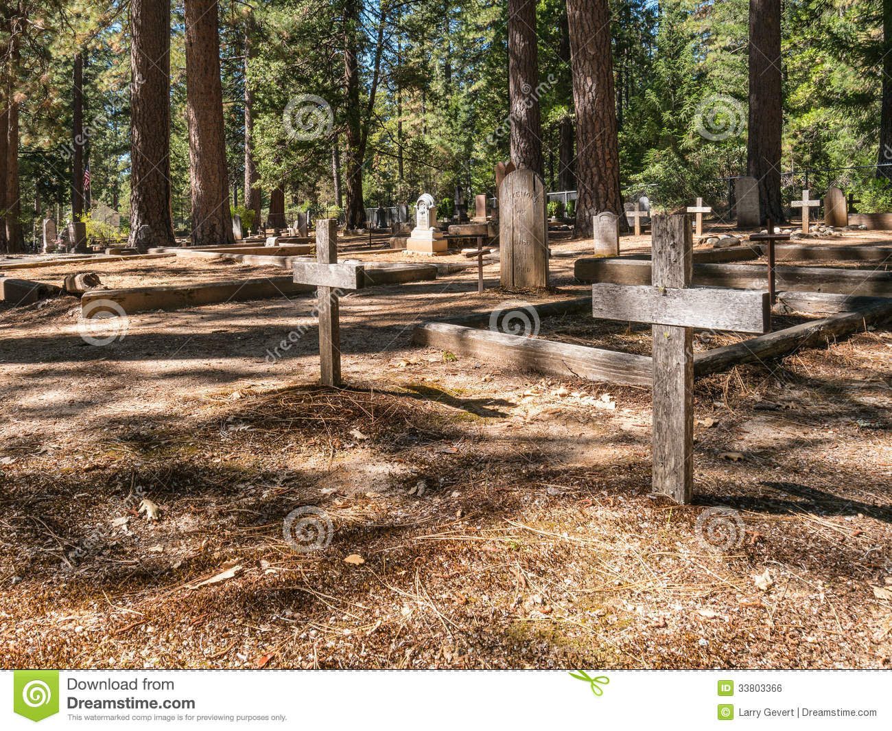 cemetery in the forest - photo #1