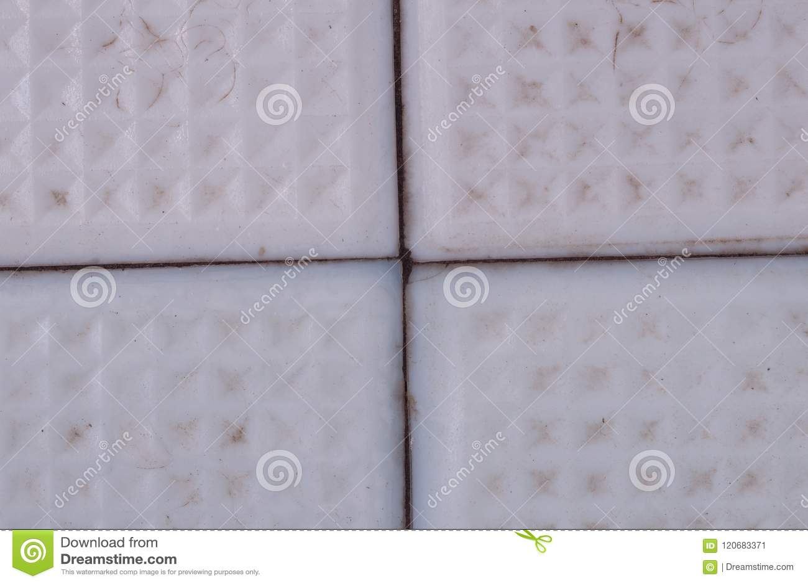 Old Ceramic Tiles Mold Unhygienic Stock Image Image Of Damage