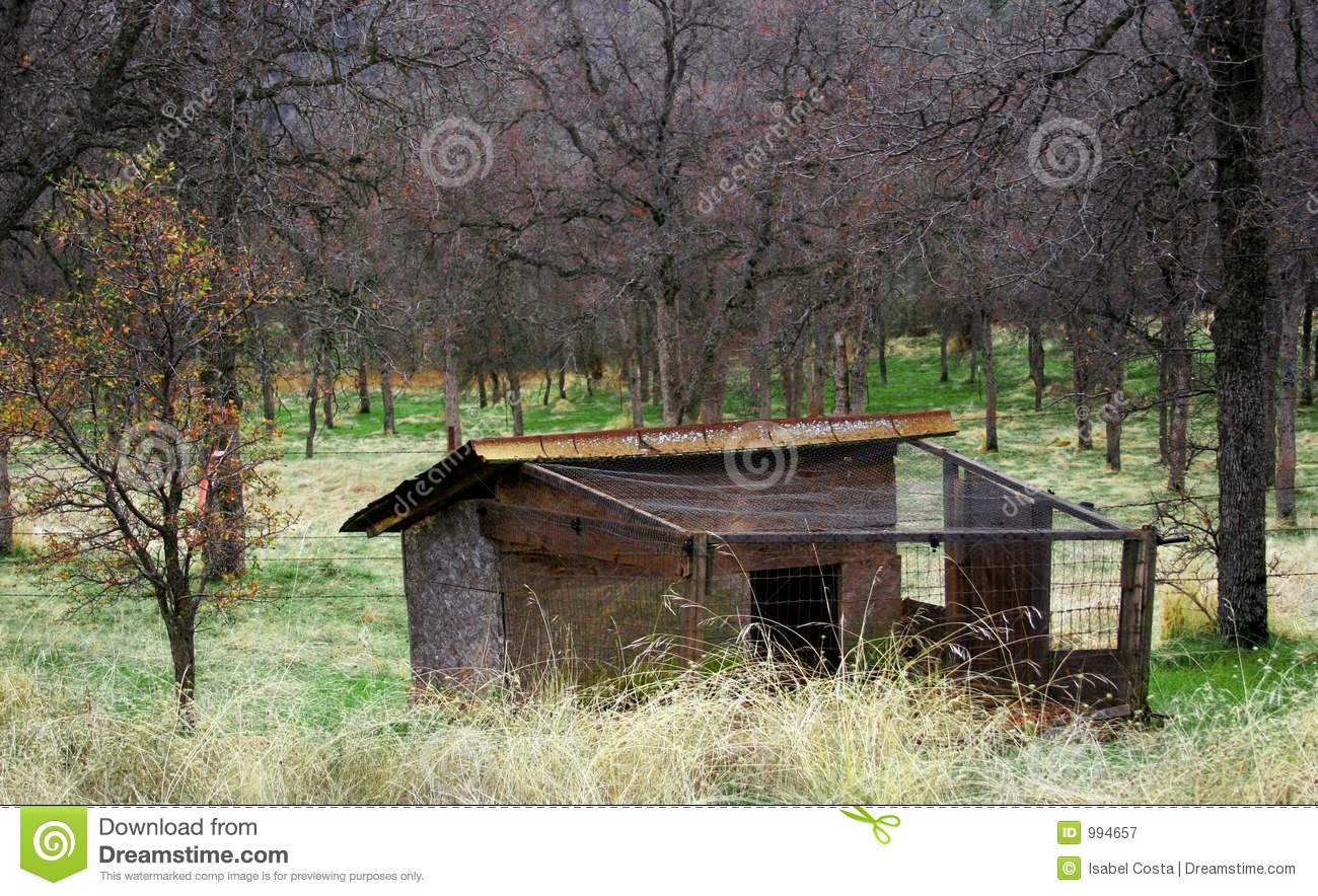 An old chicken coop royalty free stock photography image 994657