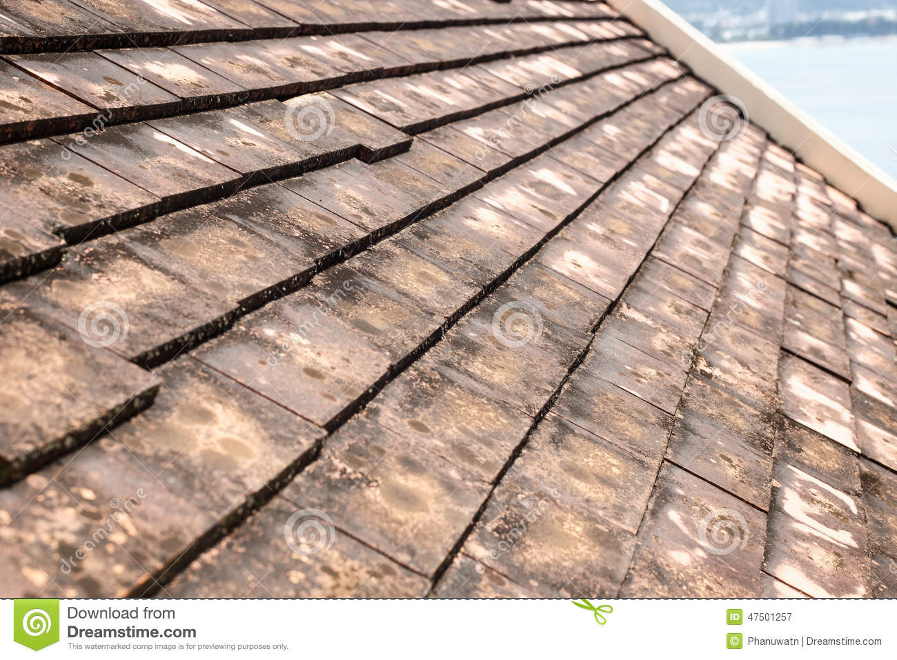 algae clay mold old roof ... & Old Clay Roof Tiles With Mold And Algae Stock Photo - Image: 47501257 memphite.com
