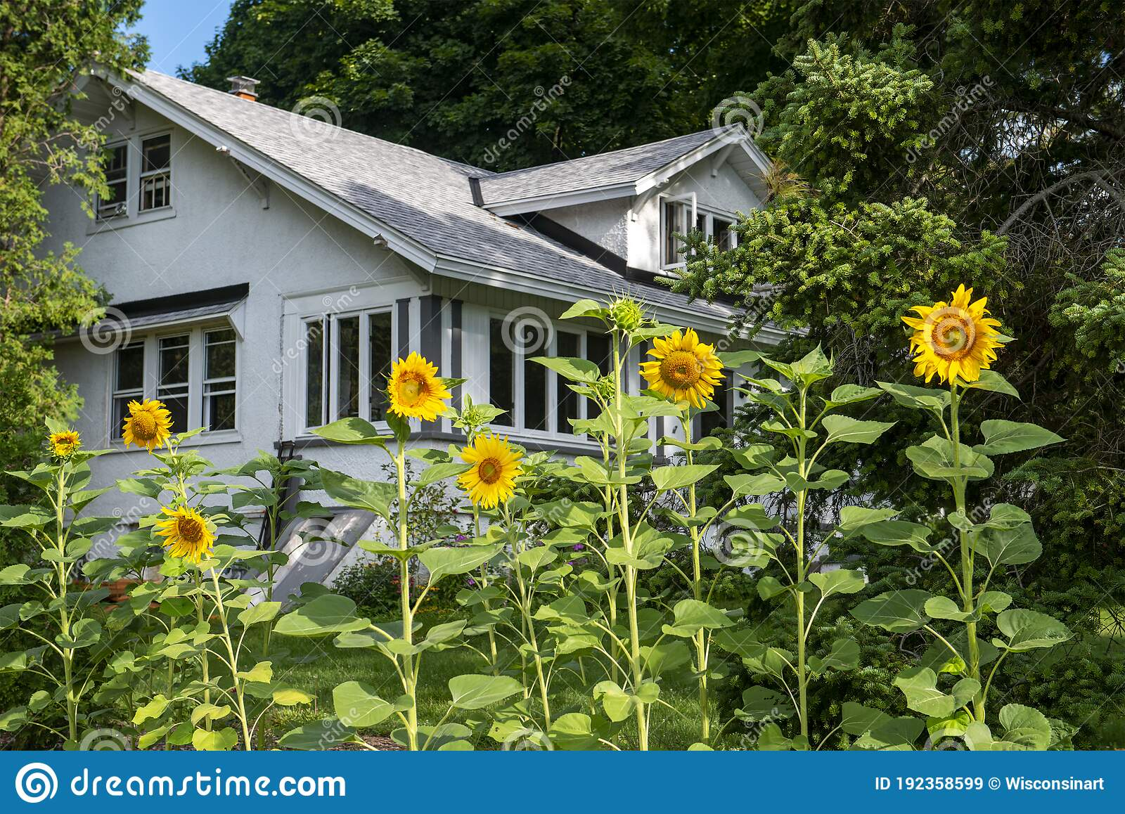 29 788 Country Farmhouse Photos Free Royalty Free Stock Photos From Dreamstime