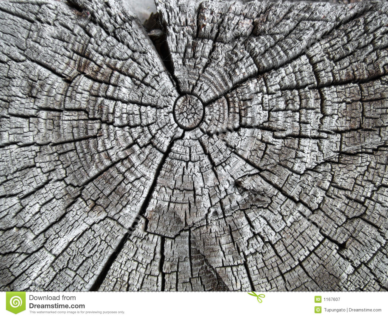 Old and cracked oak beam