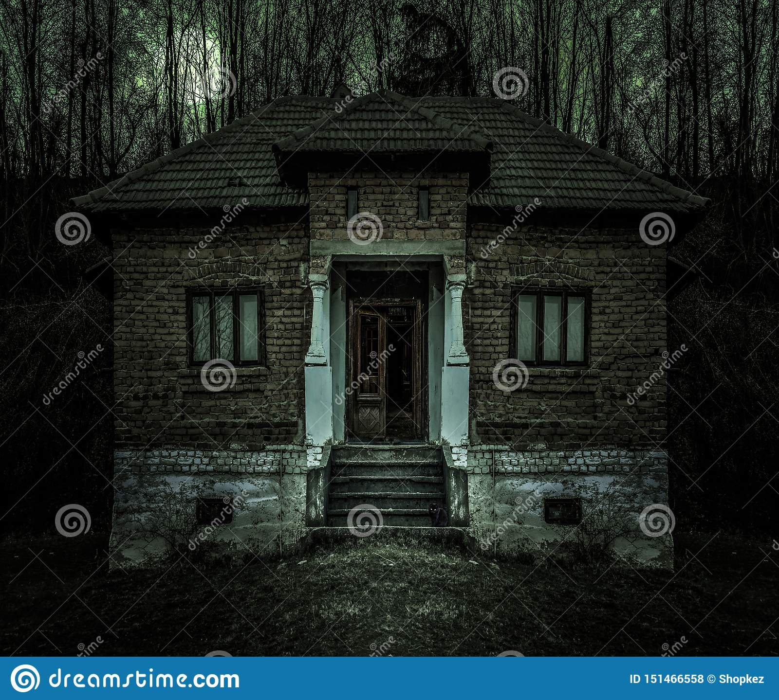 Old Creepy Haunted House With Dark Horror Atmosphere And Scary Details Ancient Abandoned Mansion With Fool Moon And Black Cat In Stock Photo Image Of Abandoned Fear 151466558