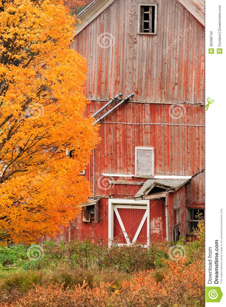 Old Dilapidated Country Barn During Autumn Stock Photo