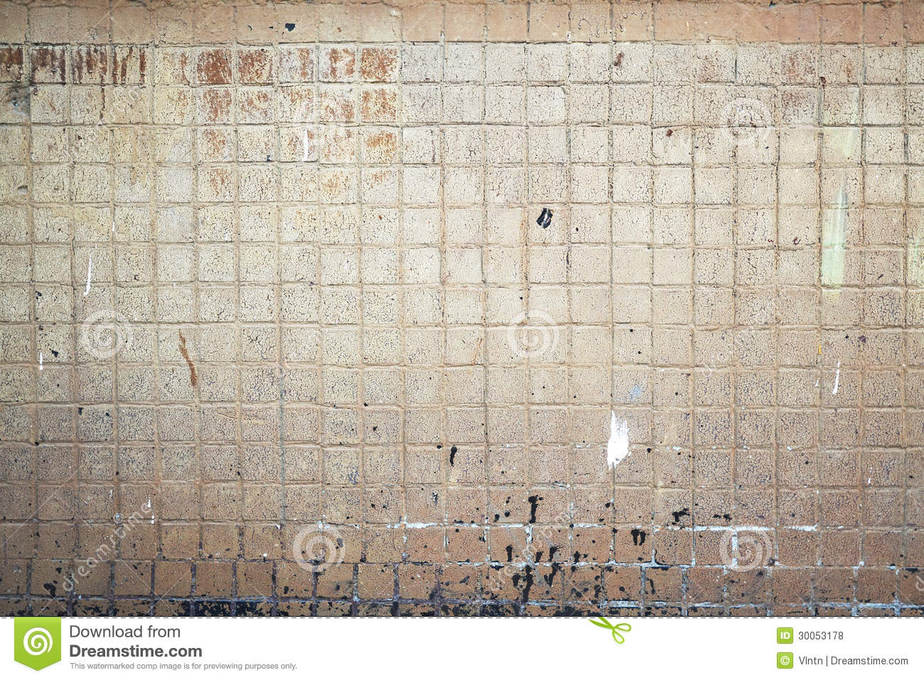 Tile Wall Royalty Free Stock Photos Image 30053178