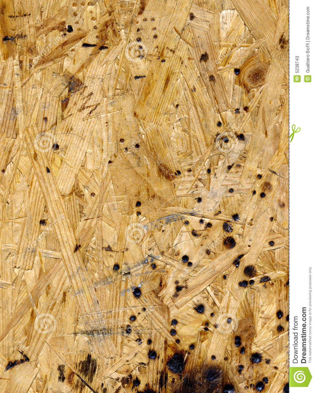 Related to 220+ Beautiful High Resolution Wood Texture Collection