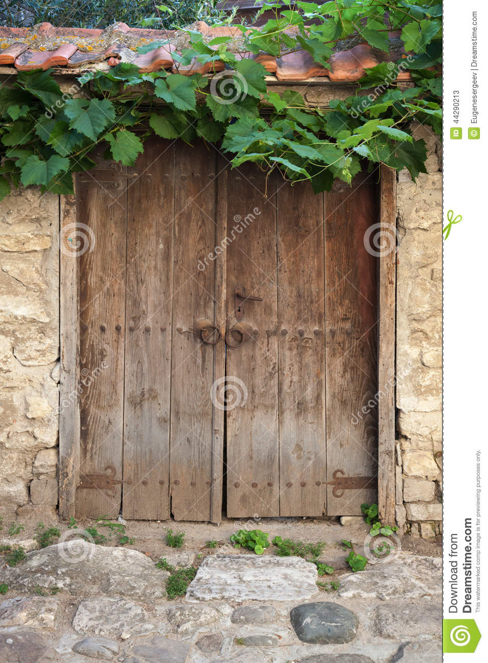 Old Door And Vine On Stone Wall Stock Image Image 44290213