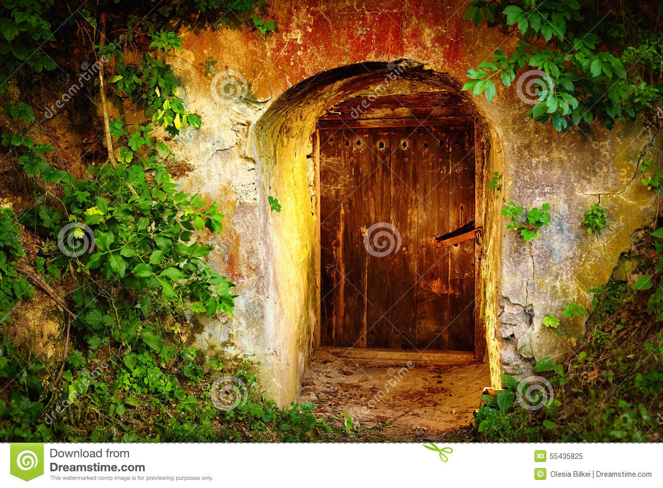 Old Entrance Door In Forest Wine Cellar Stock Image