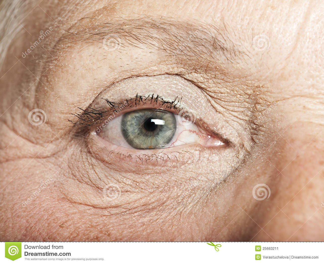 Old Eye Stock Image - Image: 25663211