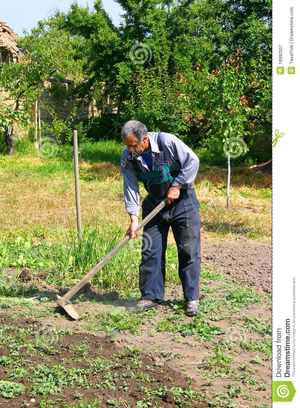 Old Farmer Royalty Free Stock Photography - Image: 18990307