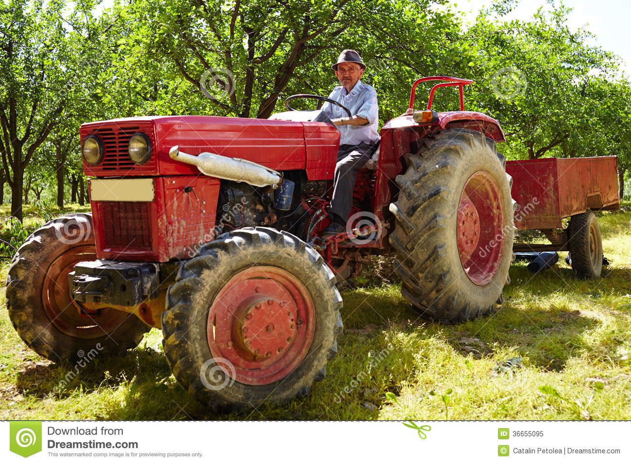 Farmer On Tractor : Old farmer driving his tractor stock image