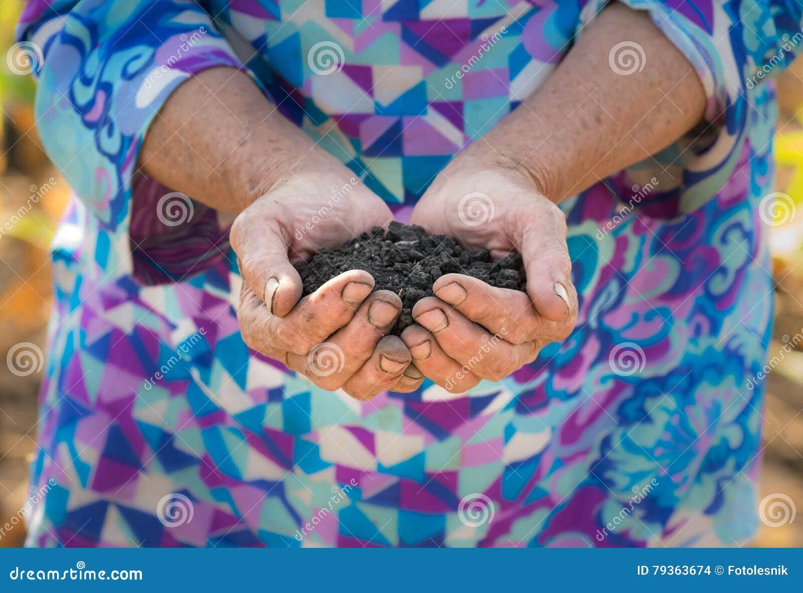 Old farmer holding pile of arable soil in hands