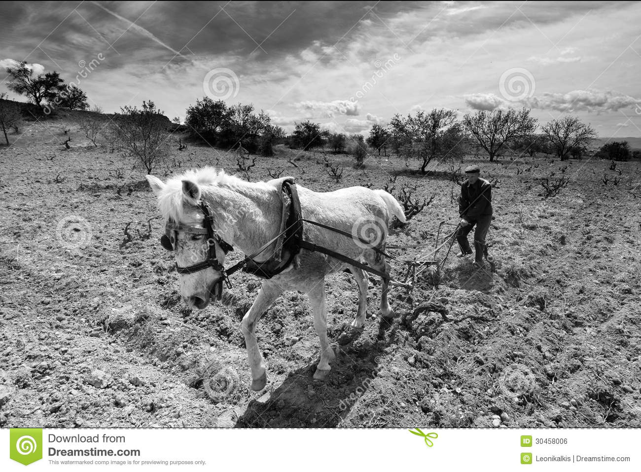 Old farmer plow horse editorial photo image 30458006