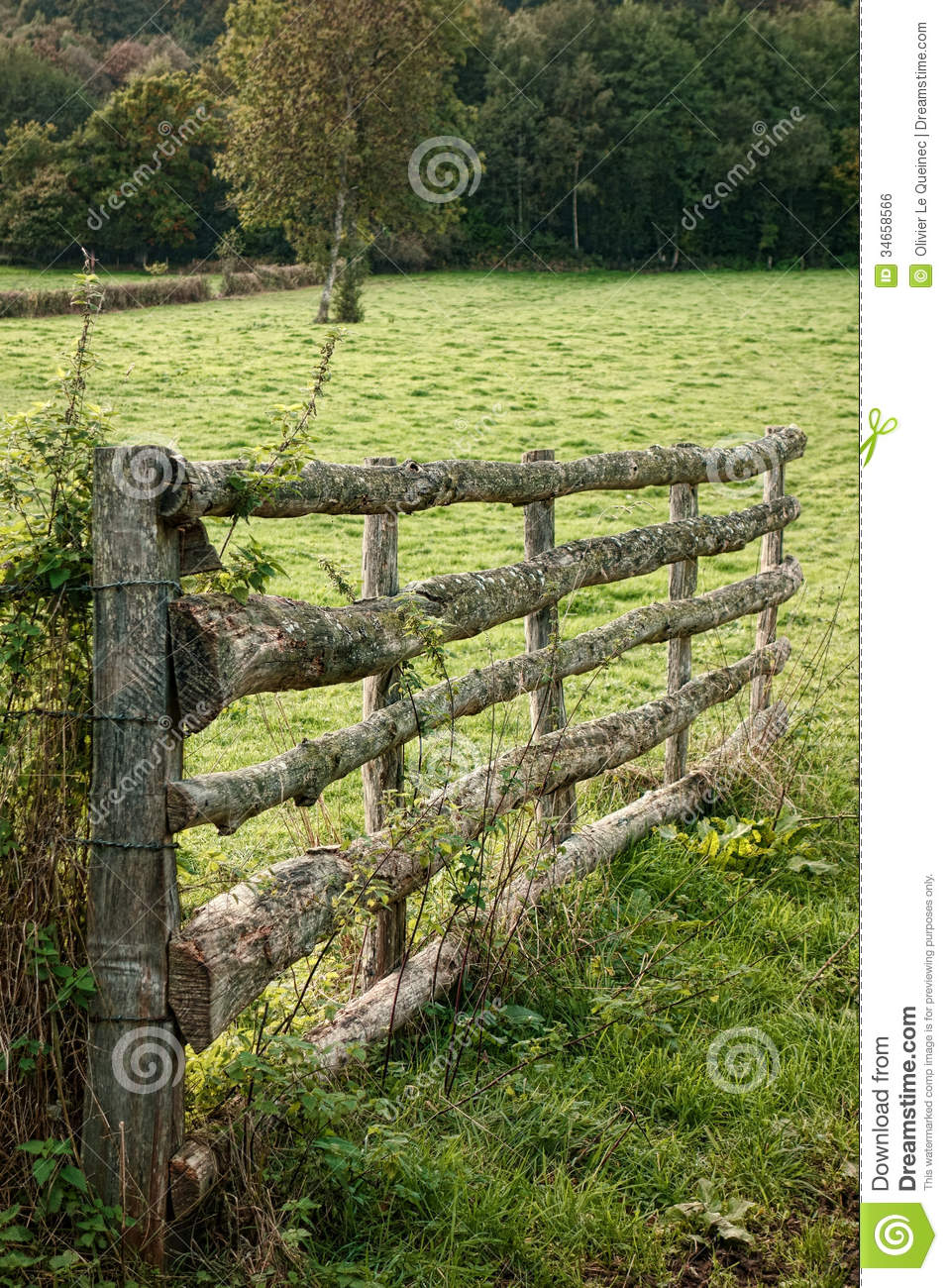Wooden Fences Pictures