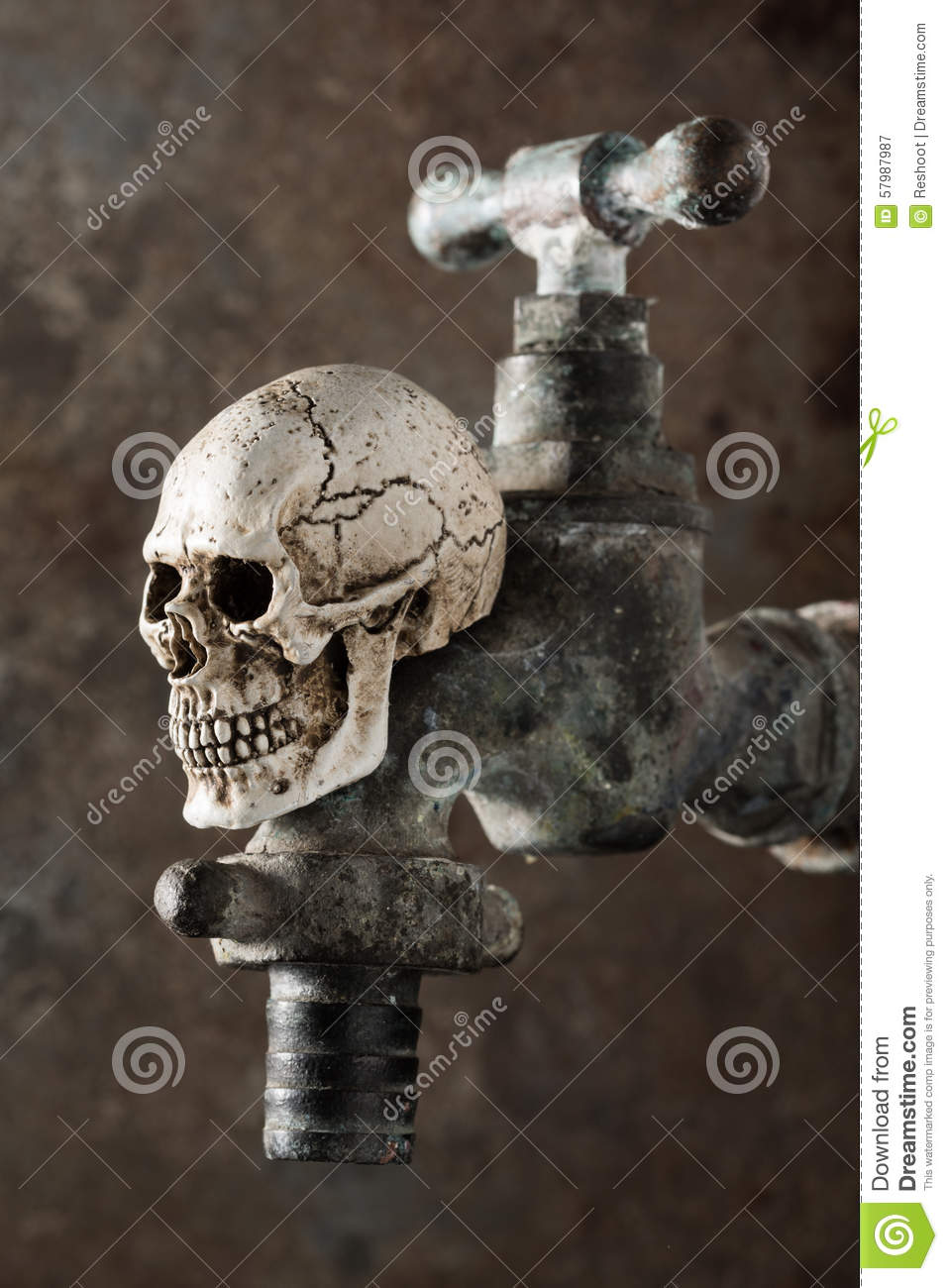 Old Faucet Wih Skull Stock Image Image Of Horror