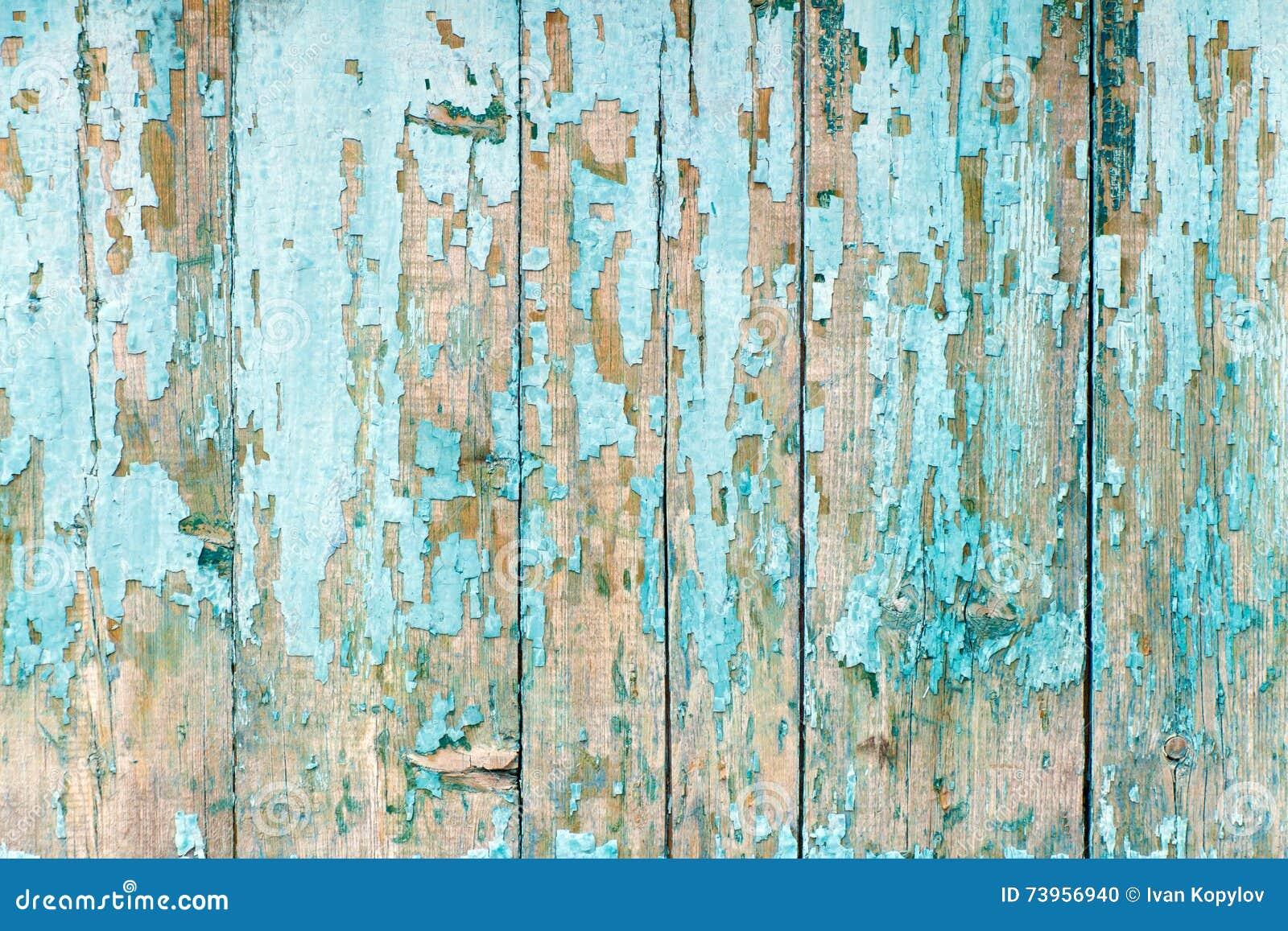 Blue Fence Paint L