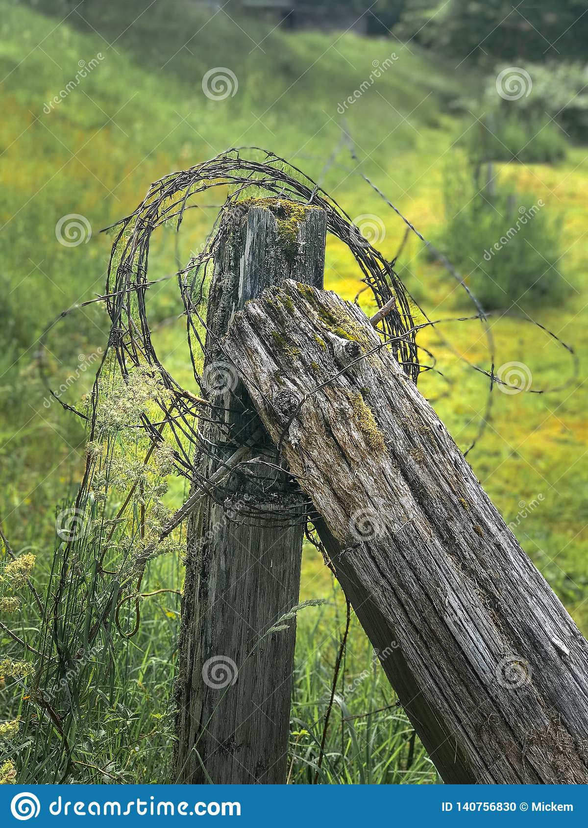Old Fence Post With Barbed Wire Stock Photo - Image of ...