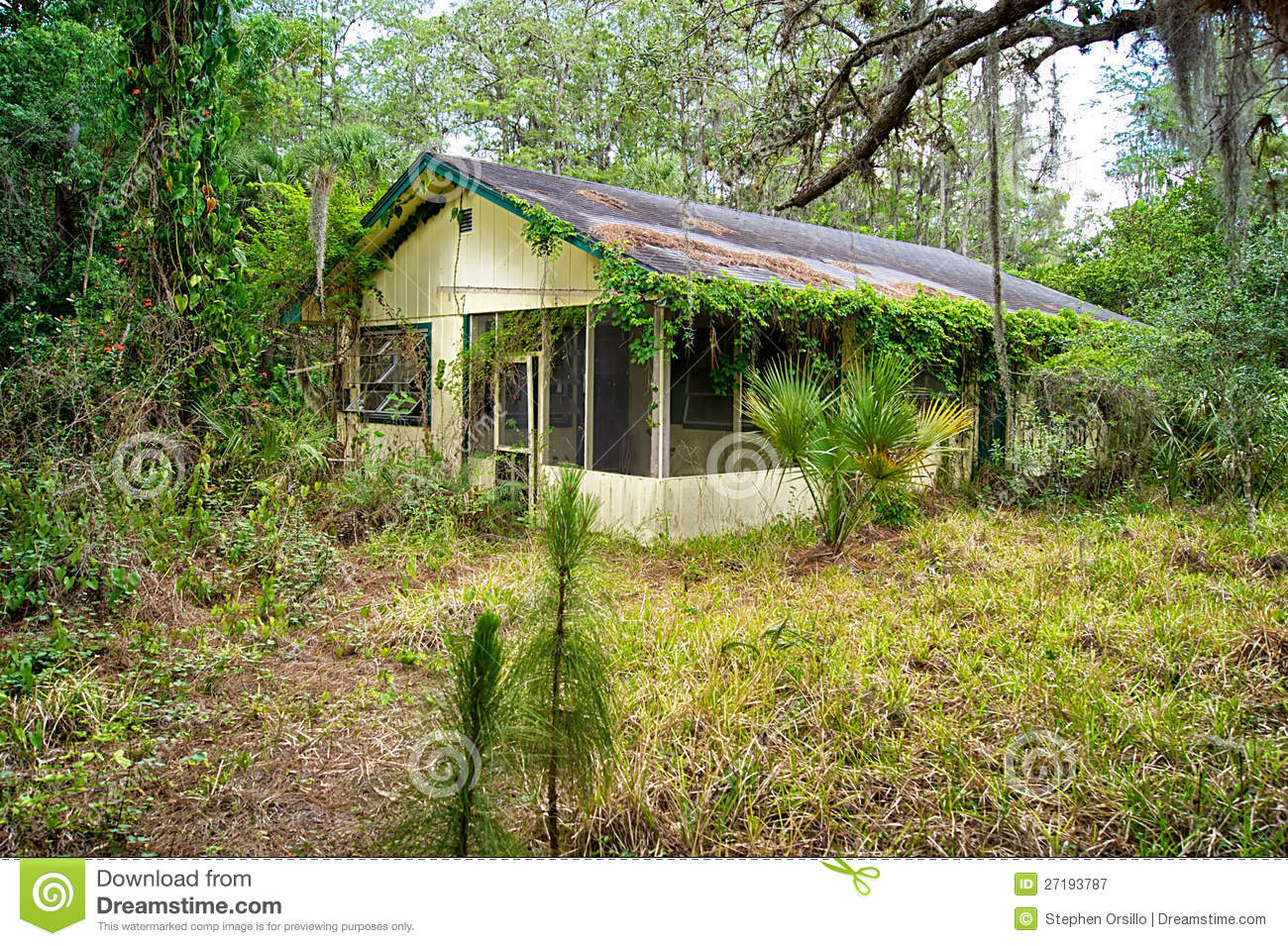 Old florida abandoned home stock image image of tropics for House photography