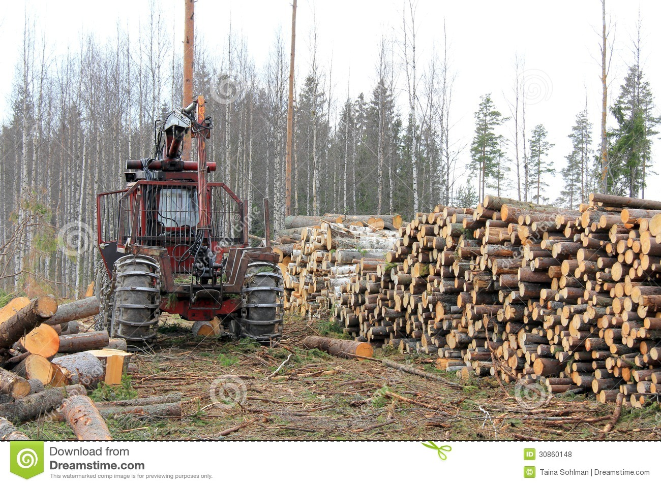 forest logging An increasing proportion of the world's protected forests are subject to extensive logging activities the practice is called 'salvage logging' and allegedly aims to.