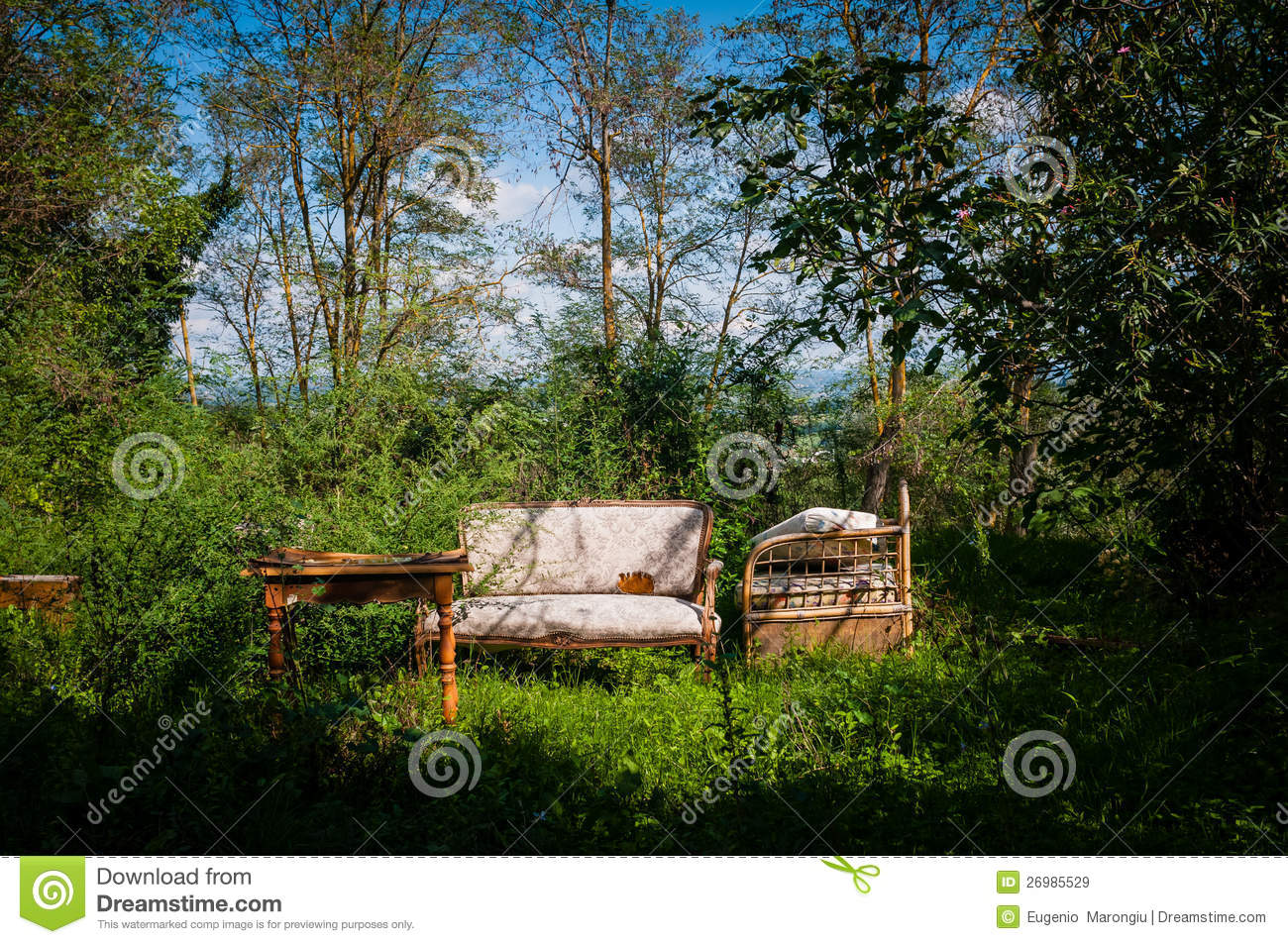 Old Furniture Abandoned In Bucolic Landscape Stock Image Image  # Muebles Lafayet
