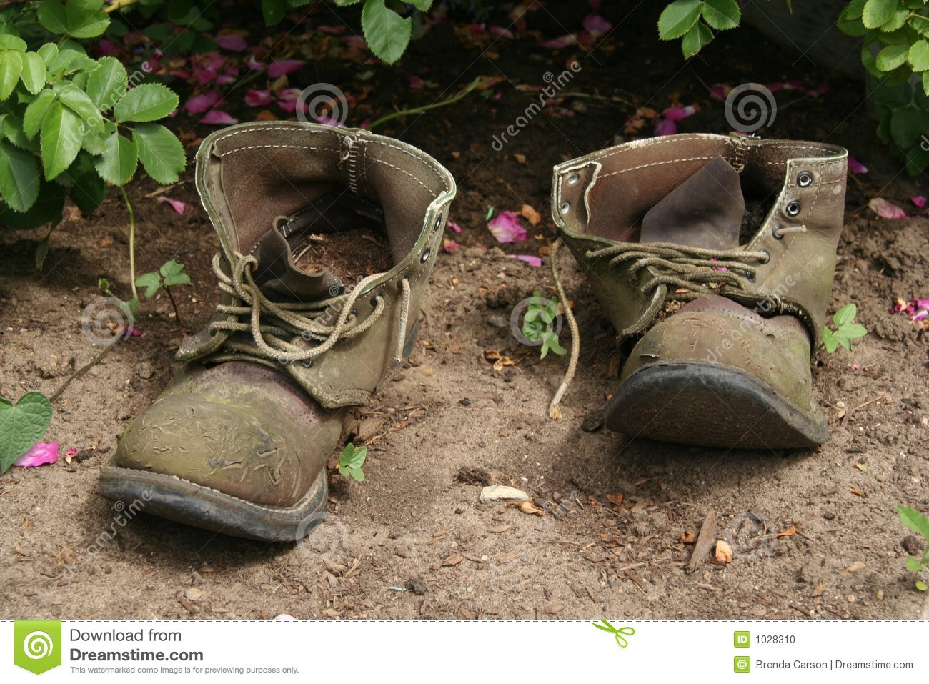 Old Garden Boots Stock Photo Image 1028310