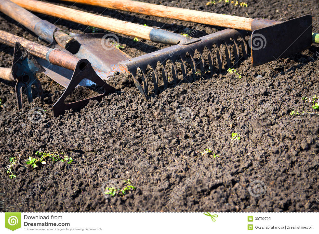 Old garden tools royalty free stock images image 30792729 for Soil utensils