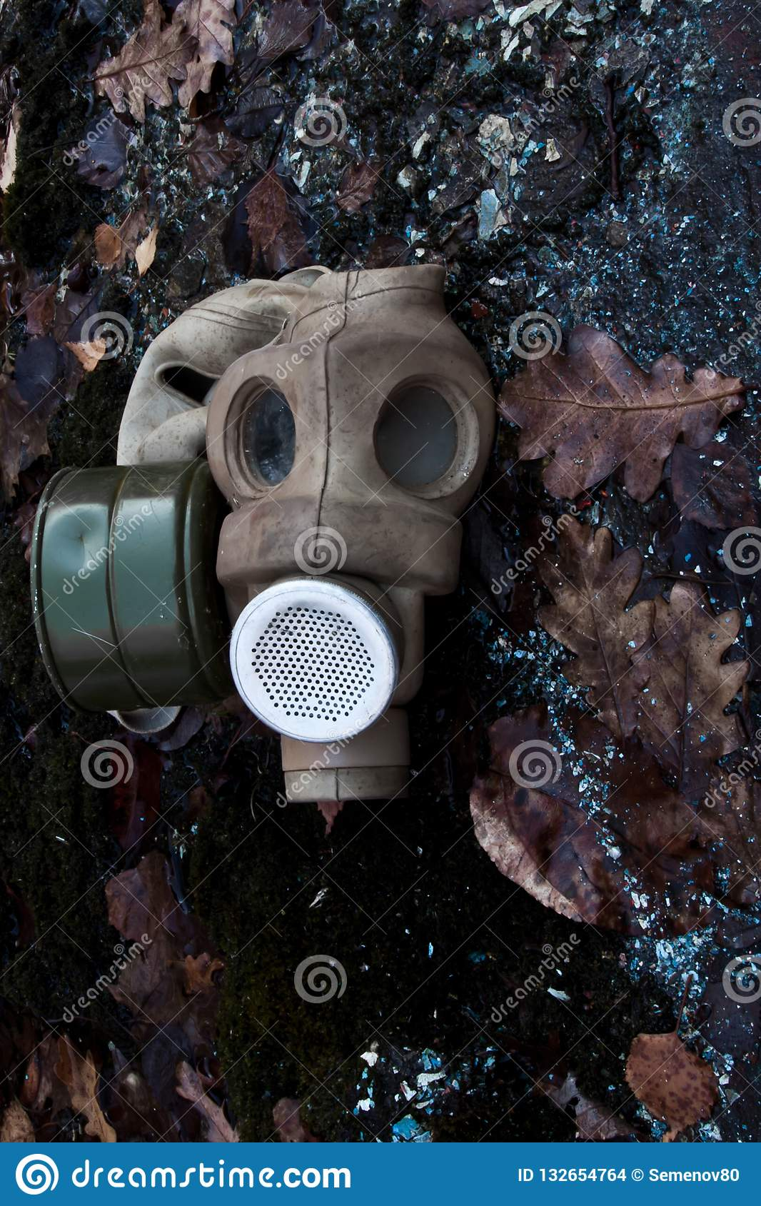 An Old Gas Mask Lies Among Dead Foliage, A Symbol Of The