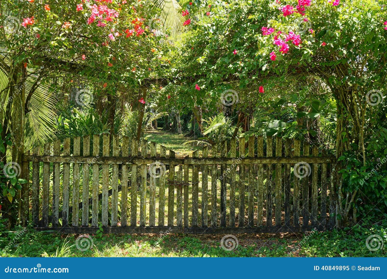 Old gate of tropical garden with bougainvillea stock photo image 40849895 - Fabriquer un porte outils de jardin ...