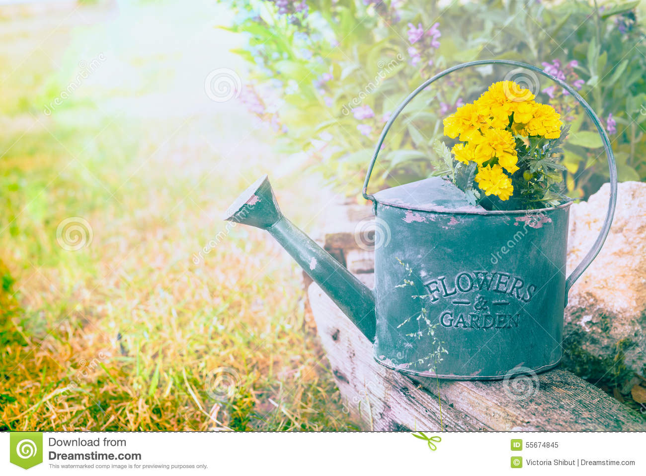 Blue Watering Can Isolated On Transparent Stock Vector 582285472 ...