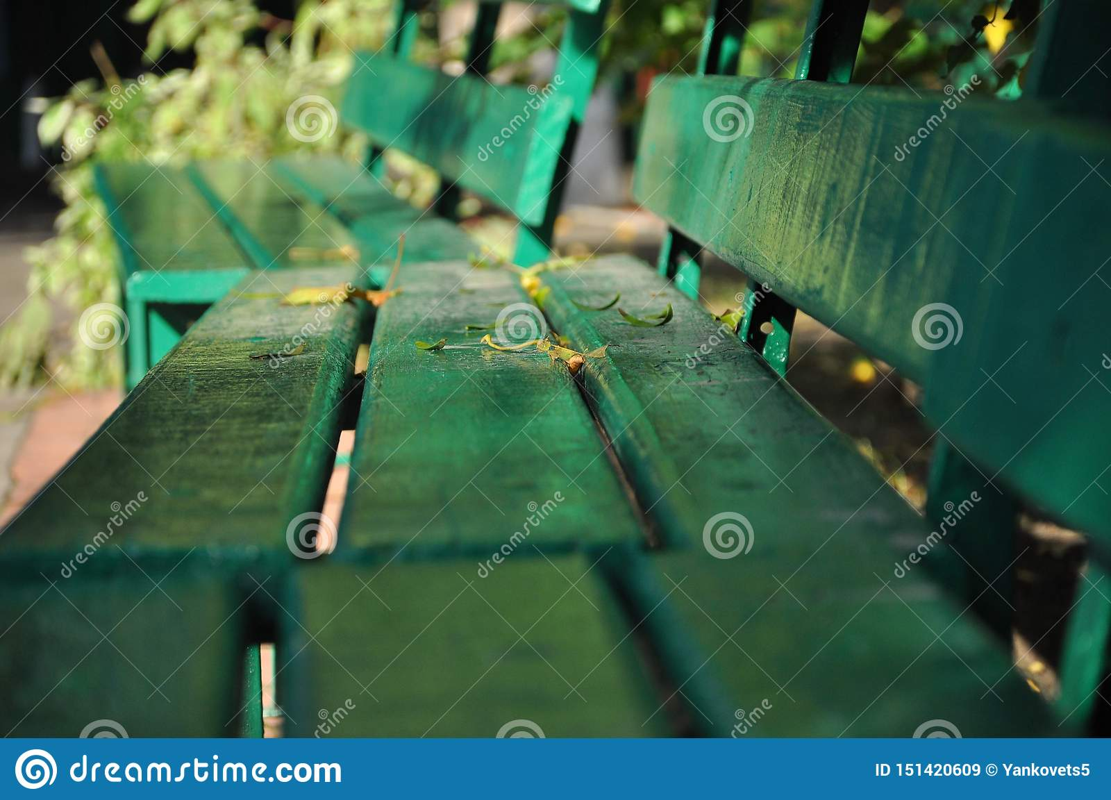 Super An Old Green Wooden Bench Stands In The Autumn Park Stock Gmtry Best Dining Table And Chair Ideas Images Gmtryco
