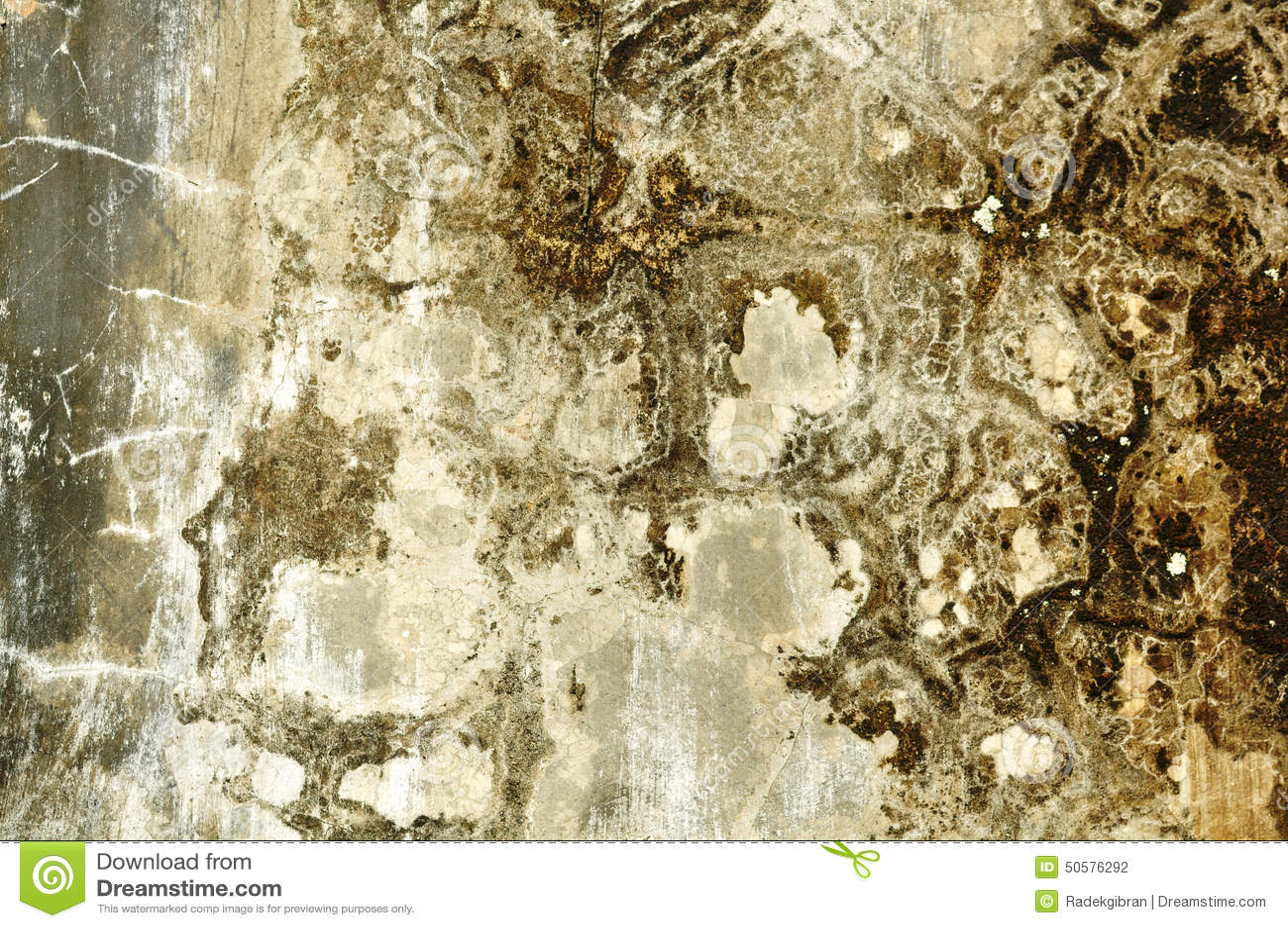 took a wallpaper texture - photo #27