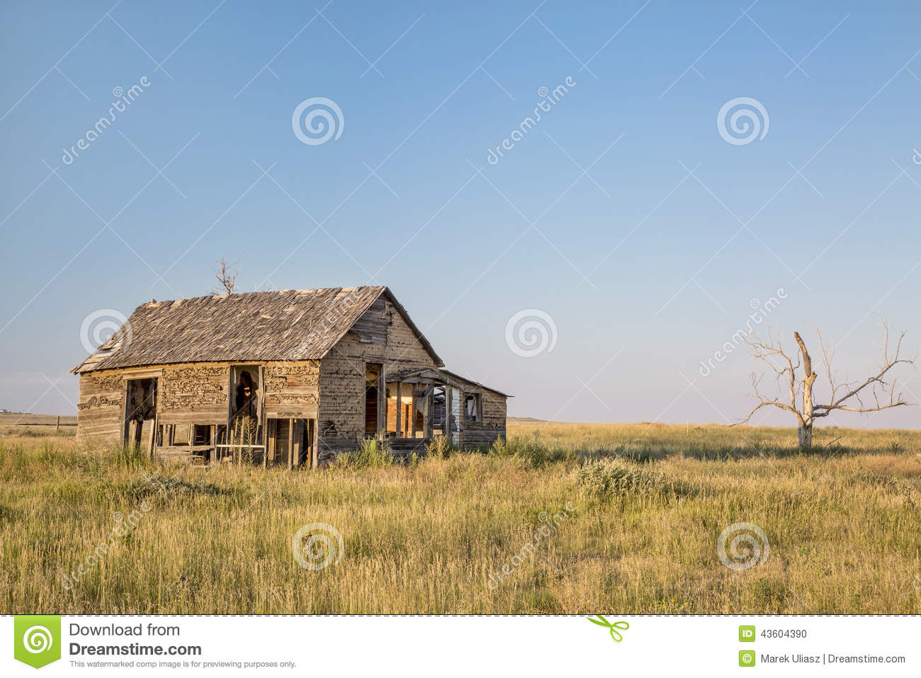 Old Homestead On Prairie Stock Photo Image 43604390
