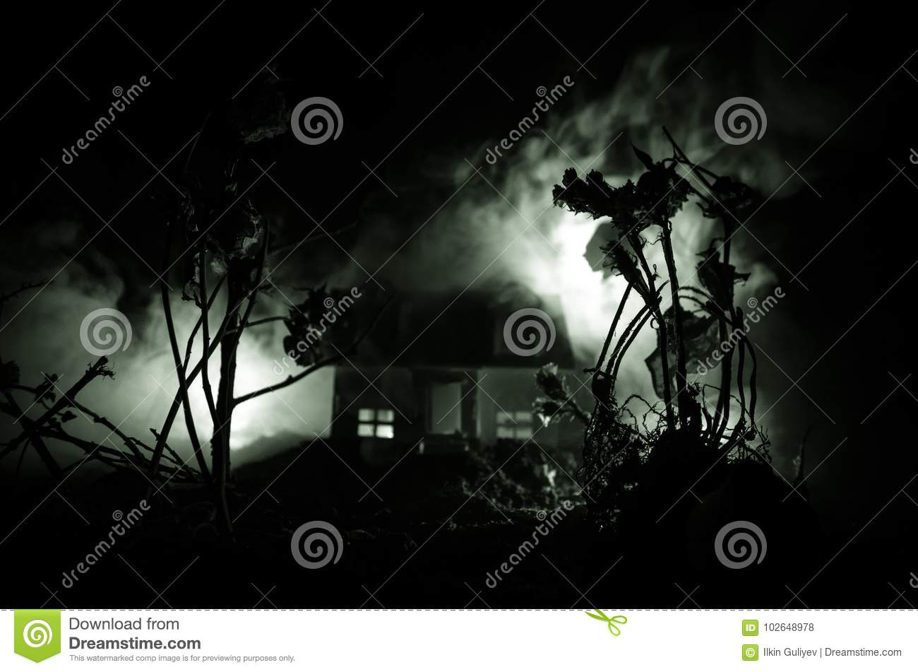 Old house with a Ghost in the moonlit night or Abandoned Haunted Horror House in fog. Old mystic villa with surreal big full moon.