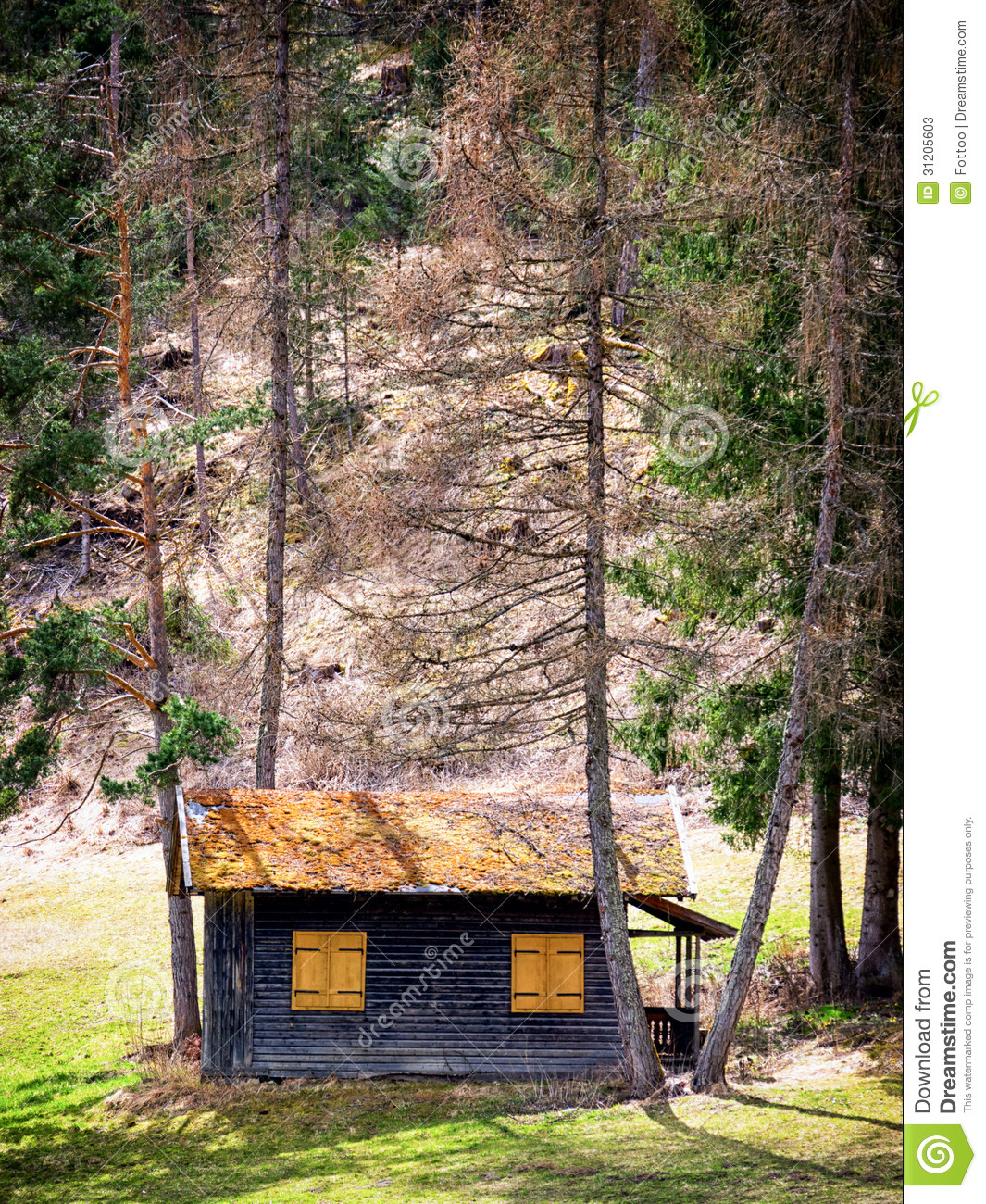 Old Hut Stock Photos Image 31205603