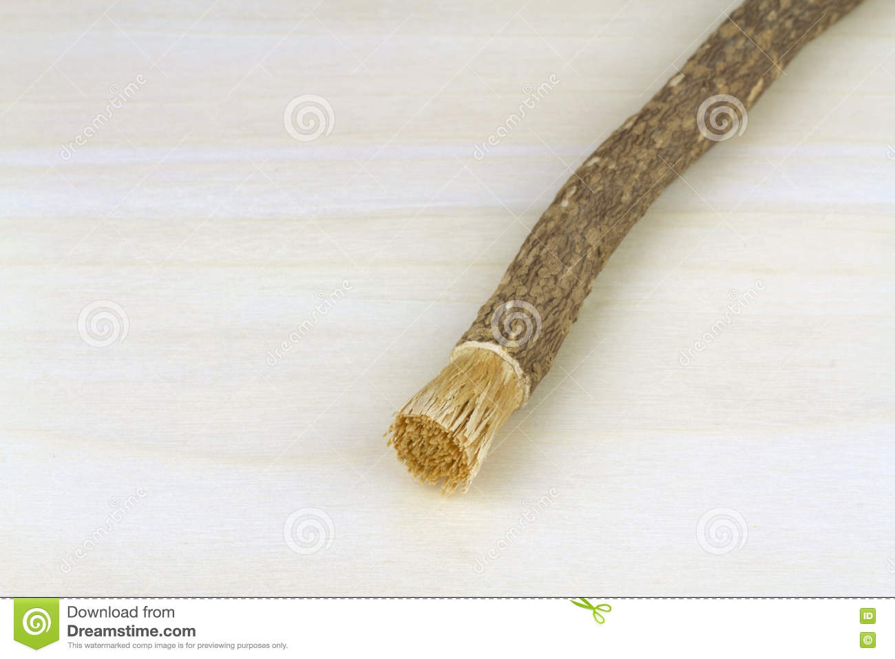 old islamic traditional natural toothbrush miswak or siwak salvadora persica stock image. Black Bedroom Furniture Sets. Home Design Ideas