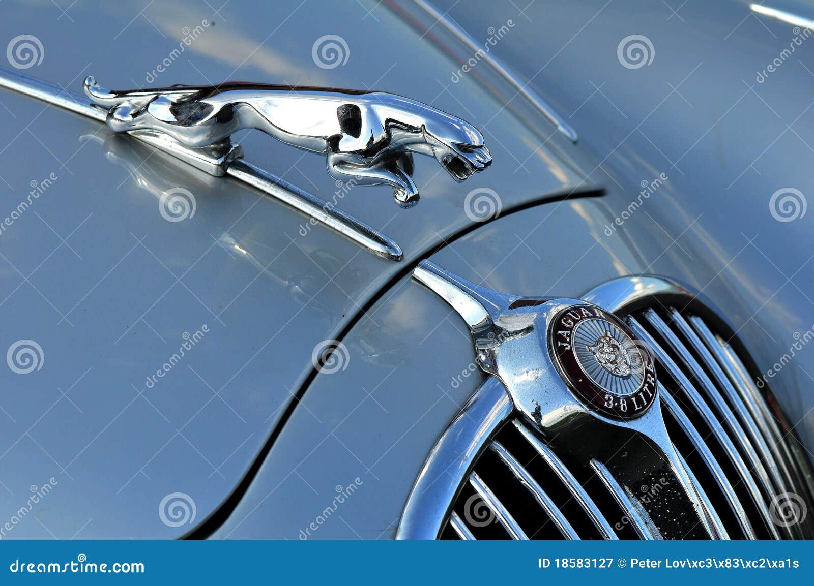 An old jaguar car symbol editorial photography. Image of drive ...