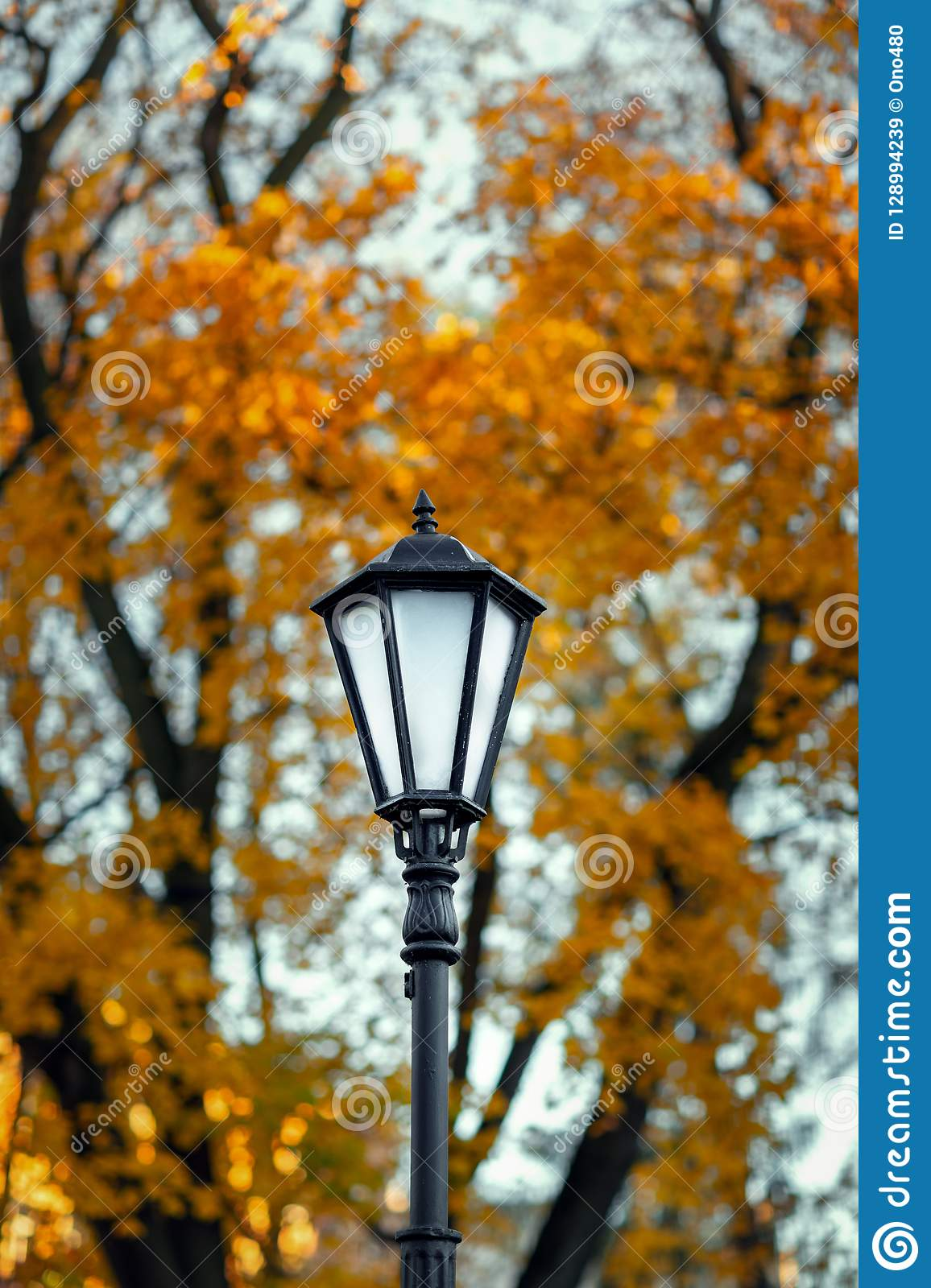 Old lamppost on a background of autumn trees