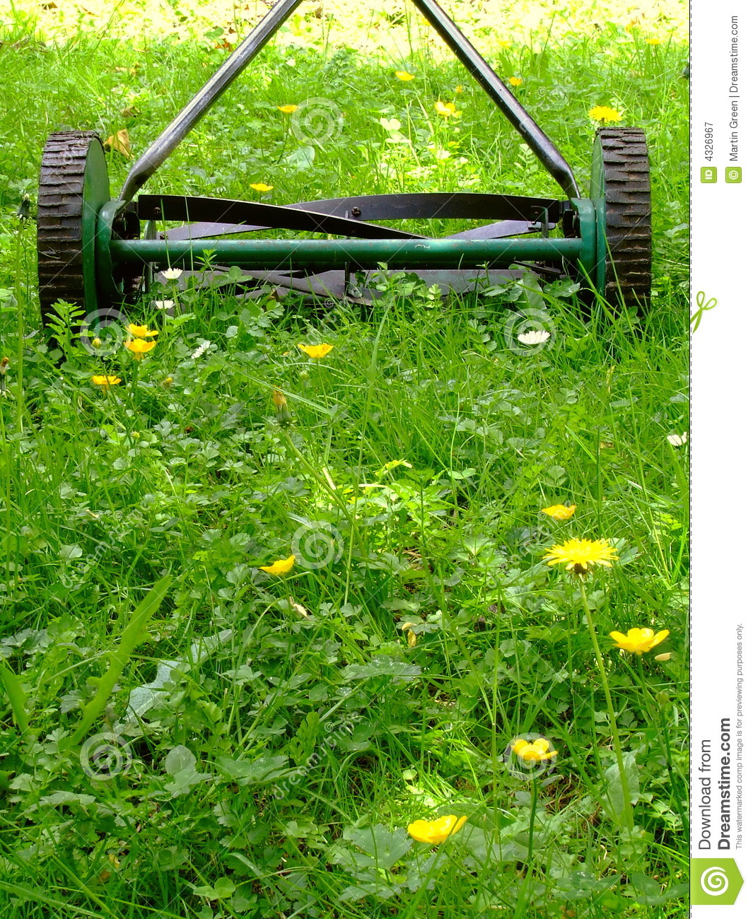 how to cut long grass by hand