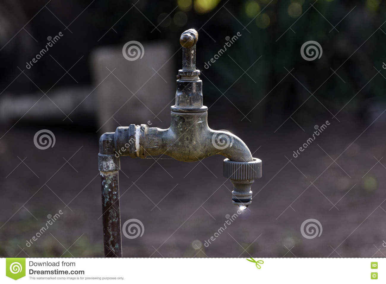 Old Leaking Garden Faucet In Garden Setting Stock Image - Image of ...