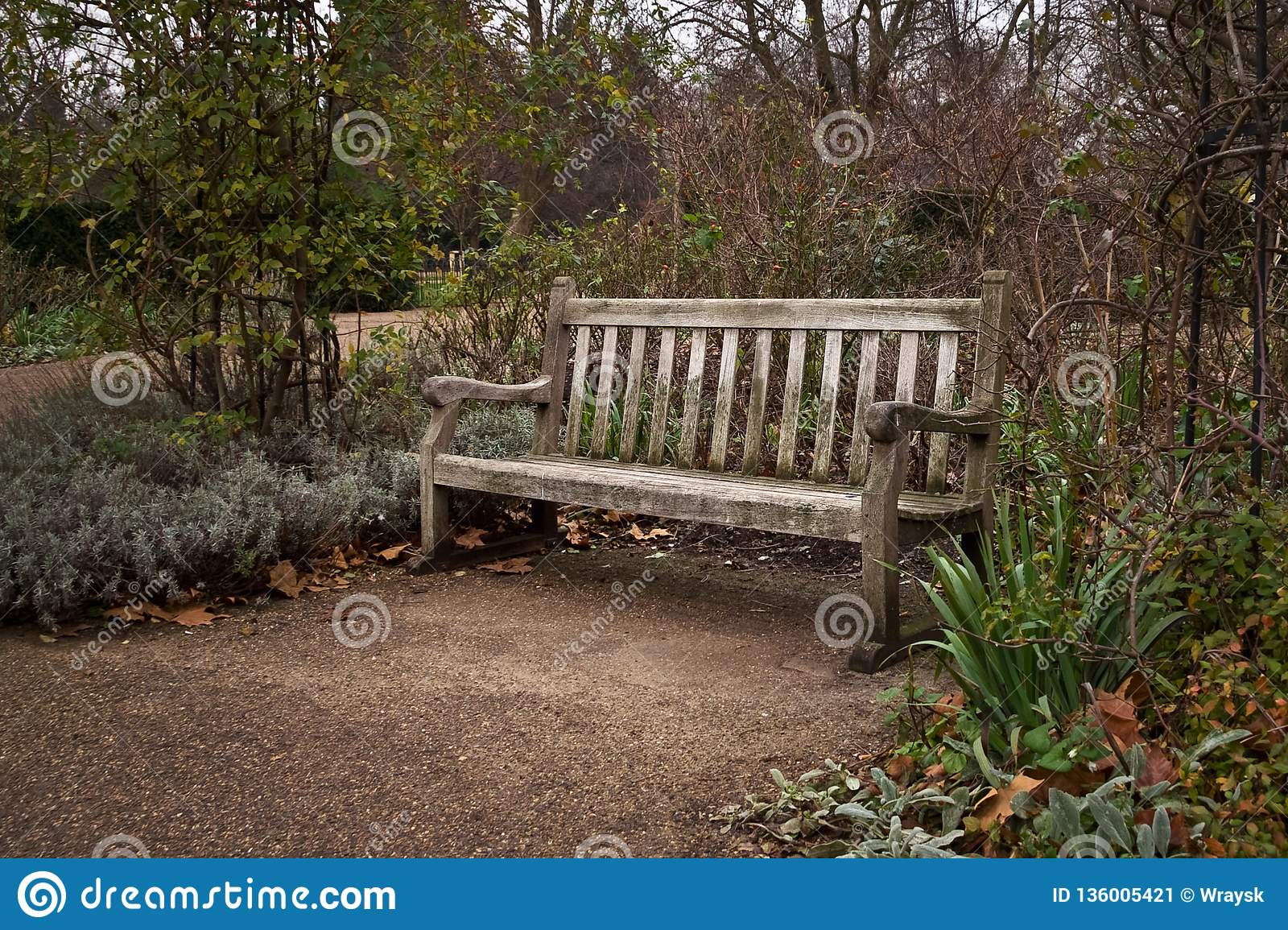 Old lone wooden bench at park on cold autumn evening