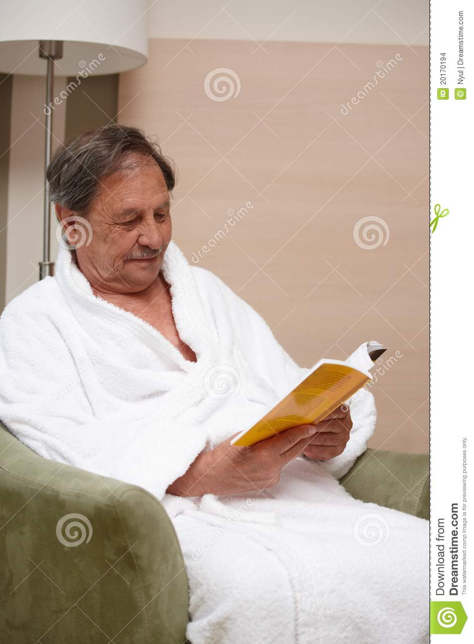 Old Man In Armchair Reading A Book Stock Images Image